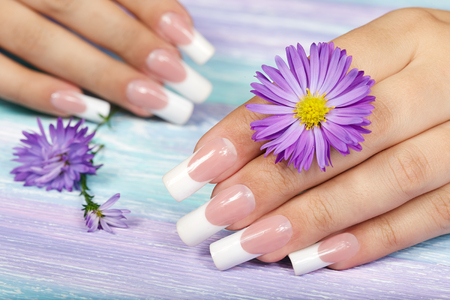 Hands with long artificial french manicured nails and violet flower