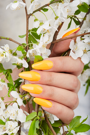 Hand with long artificial manicured nails colored with yellow nail polish