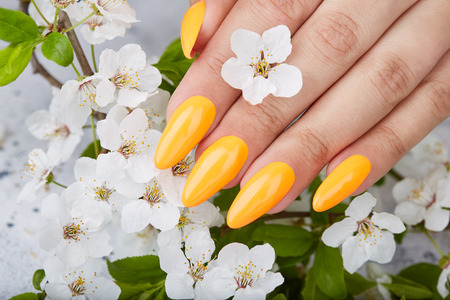 Hand with long artificial manicured nails colored with yellow nail polish and white flowers