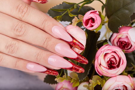 Hand with long red artificial french manicured nails and pink rose flowers Banco de Imagens