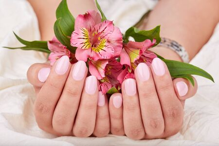 Hands with short manicured nails colored with pink nail polish and lily flowers