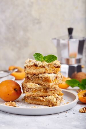 Cake with apricots and walnuts, cut in squares. Delicious homemade sweet dessert. And blank space for text.