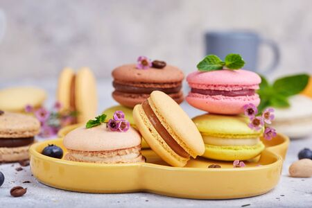 Colorful macaron cakes. Sweet French dessert