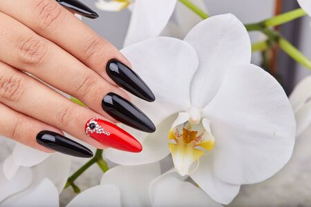 Hand with long artificial manicured nails colored with black and red nail polish and white orchid flower