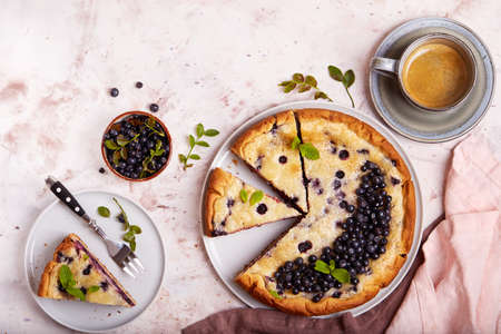 Jellied open pie tart with blueberry and cream filling. Delicious summer homemade dessert. Top view