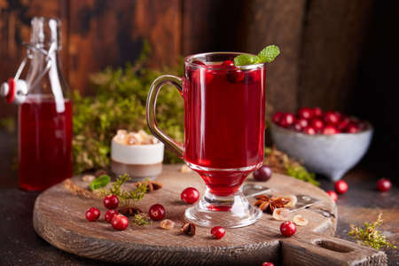 Healthy cranberry juice drink and fresh cranberries. Traditional Russian beverage mors. Cranberry tea.