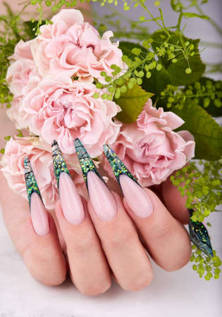 Hand with long artificial green french manicured nails and pink rose flowers. Fashion and stylish manicure. Фото со стока