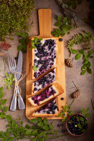Tart with blueberries and sour cream filling. Sweet homemade dessert with wild forest berries.
