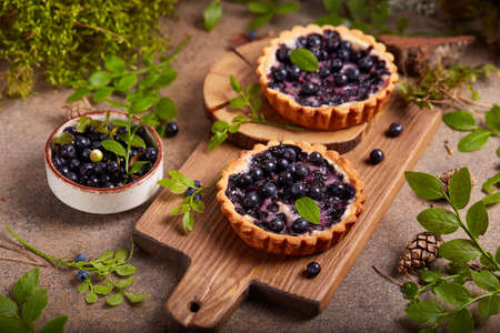 Mini tarts with blueberries and sour cream filling. Sweet homemade dessert with wild forest berries.