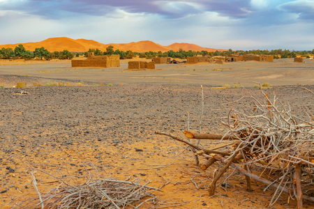 Hamada du Draa, Moroccan stone desert at dawn, with dry branches and in the foreground, a village and sand dunes in the background, Morocco