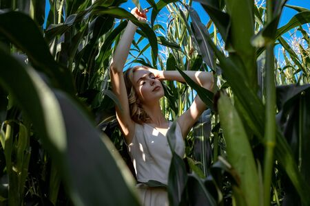 Portrait of a fair-haired girl in fashionable and stylish clothes, among the foliage of a corn field. On a sunny day.