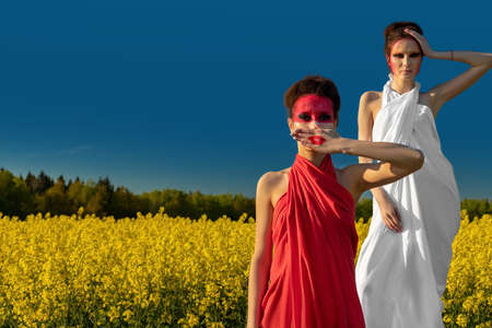 Two beautiful young brunette girls with creative bright makeup in tunics on a background of a field of yellow flowers and a blue sky. Two girls in medical masks. Healthcare