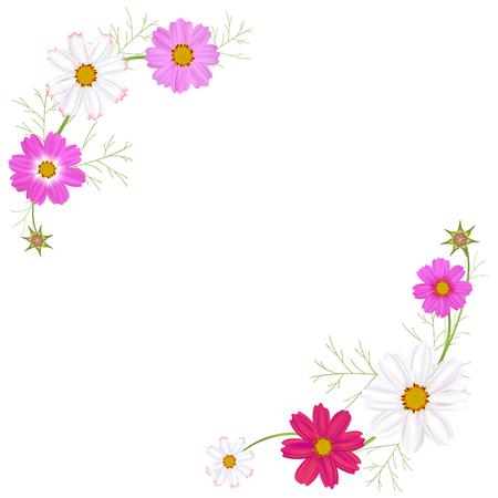 Flowers. Cosmos. Floral background. Frame. Border. Vector illustration.