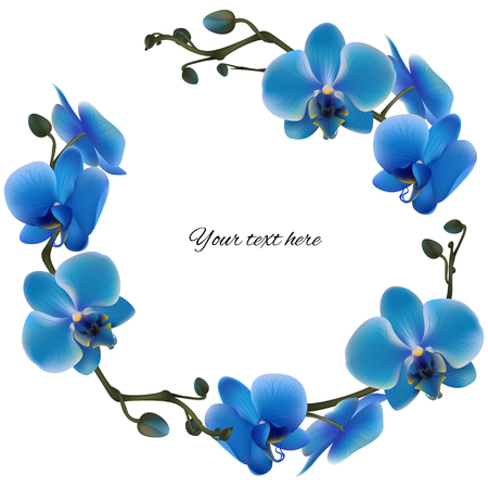 Blue orchids. Tropical flowers. Exotic plants. Floral background. Card. Frame. Border. Template.