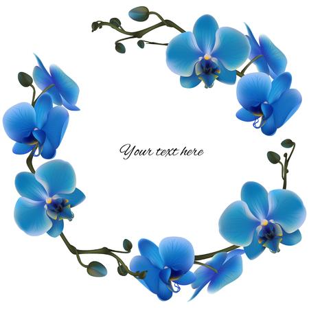 fleurs bleues naturelles. fleurs exotiques de fond floral élément de champ. élément de fleur. carte exotique