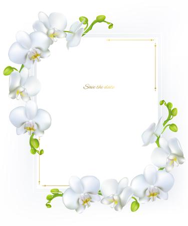 Weiße Orchideen . Tropische Blumen . Exotische Blumen . Blumenhintergrund . Karte . Rahmen . Grenze . Vorlage Vektorgrafik