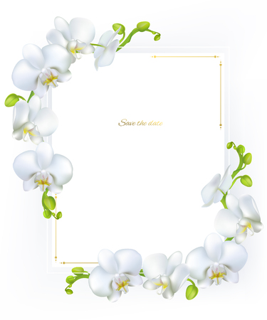 White orchids. Tropical flowers. Exotic plants. Floral background. Card. Frame. Border. Template. Çizim