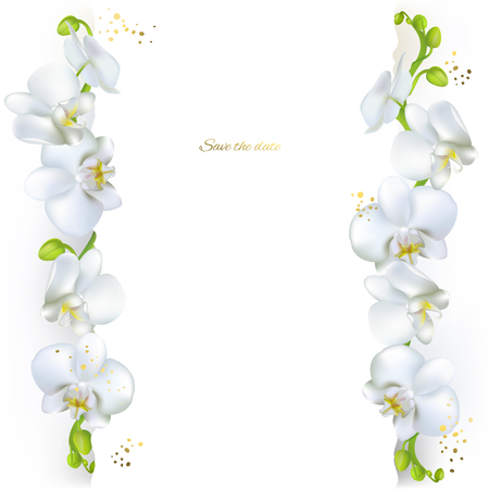 White orchids. Tropical flowers. Exotic plants. Floral background. Card. Frame. Border. Template. Ilustrace