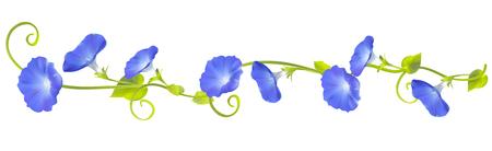 Convolvulus. Bindweed. Flowers. Floral background. Crocheted plants. Frame. Border. Card. Vector illustration. Standard-Bild - 93478544