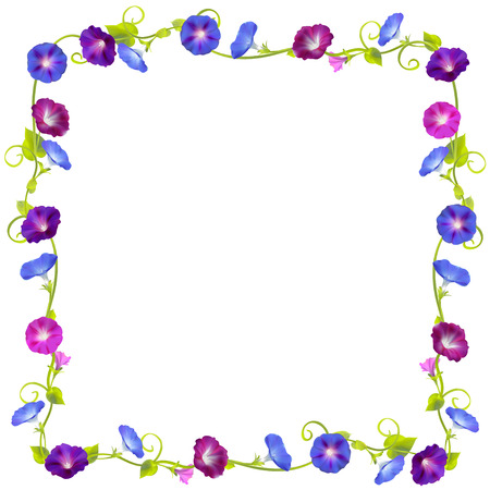 Convolvulus. Bindweed. Flowers. Floral background. Crocheted plants. Frame. Border. Card. Vector illustration.