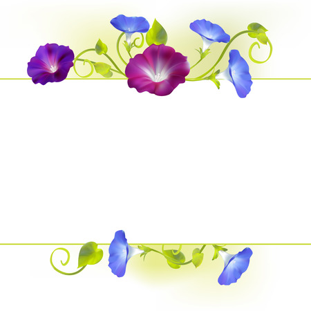Flowers. Convolvulus. Bindweed. Floral background. Crocheted plants. Frame. Border. Card. Vector illustration. Illustration