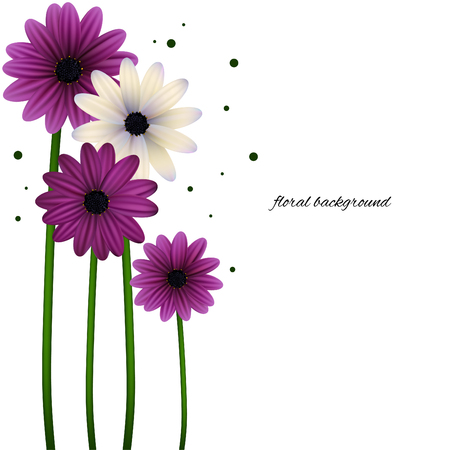 Floral background can be use for frames and cards. Gerberas, daisies, plants, flora vector illustration.