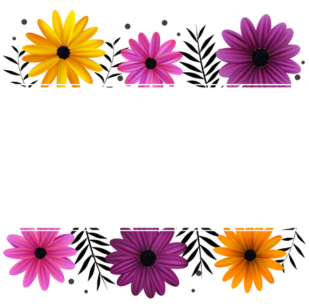 Daisies floral background, Gerberas, plants vector illustration.