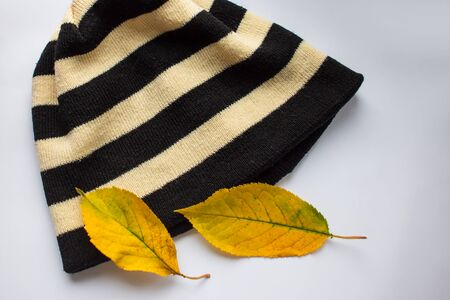 Striped hat and autumn leaves on a white background. Leaves fall on a hat in the fall. Knitted hat with stripes