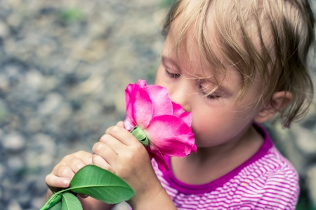 beautiful greeting child smelling a rose photo