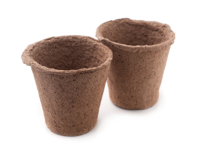 biodegradable: Two Biodegradable Peat Moss Pots  Isolated On White Background