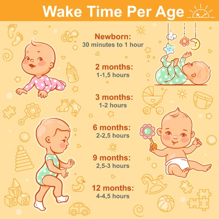 Active little baby girls and boys with toys. Wake hours per age from newborn to 1 year. Baby day regime table. Vector illustration with text. Design template. Иллюстрация