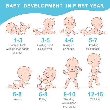 Infographic of baby growth from newborn to toddler with text. First year milestones. Cute boy, girl of 12 months. Design template. Vector color illustration.