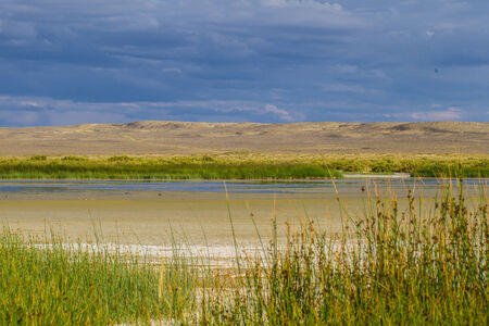 Late day light illuminates a shallow pond in the Chain Lakes region of Wyoming