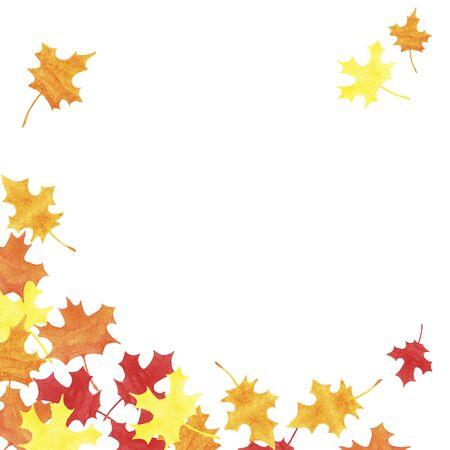 foglie di acero gialle, rosse, arancioni disegnate a mano dell'acquerello con lo spazio della copia su fondo bianco. Illustrazione autunnale per biglietti di auguri, inviti di nozze, stampa