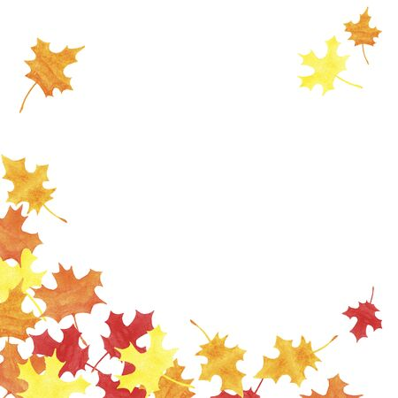 hand drawn watercolor yellow, red, orange marple leaves with copy space on white background. Autumn illustration for greeting cards, wedding invitations, print