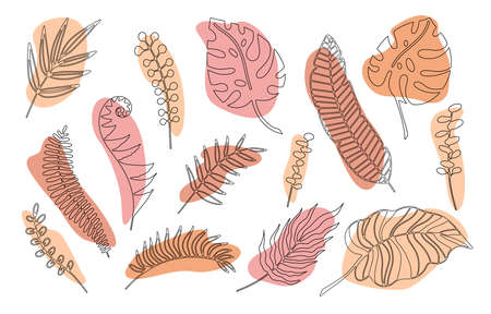Hand drawn branches set of tropical plants leaves with color shape isolated on white background. Outline doodle vector illustration. Design for pattern, posters, invitation, greeting card Vettoriali