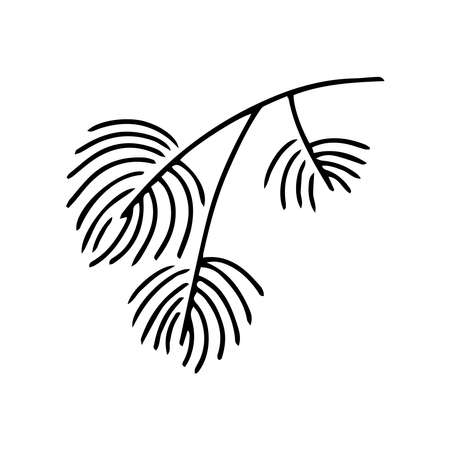 Hand drawn doodle of fir tree branch isolated on white background. Conifer sketch. Vector illustration. Design for print, banner, greeting card, logo, invitation