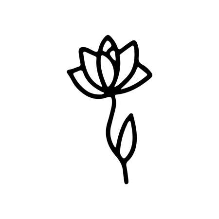 Hand drawn flower in doodle style isolated on white background. Vector outline botanical illustration. Design for greeting card, banner, web, sticker, tattoo