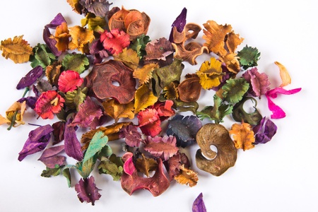 Many kinds of dried flowers in white.
