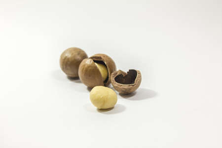 Macadamia nuts on a white background, taken close in the studio.