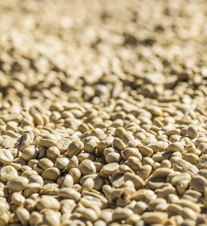 Coffee beans are peeled out, Can use for background. soft blurred and soft focus