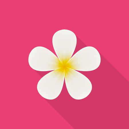 frangipani flower: Plumeria (frangipani) flower icon