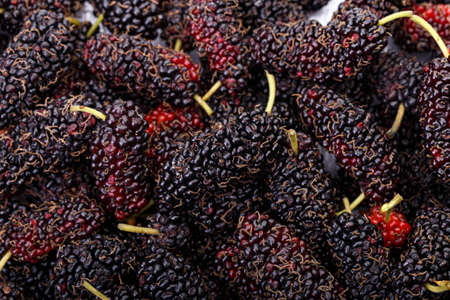 Ripe mulberries background. healthy fruit