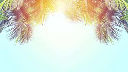 Blue sky and palm trees, vintage style. Summer background concept