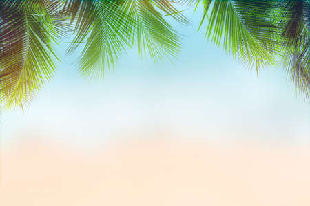 Sunny tropical beach with palm trees and turquoise water. Summer background concept