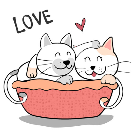 cute couple friendship cat hug each other on pink background