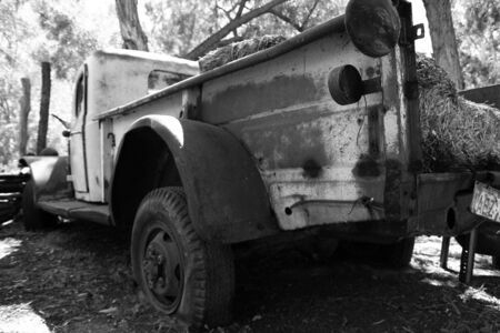 Old Truck with Hay in Back
