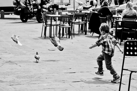 Boy chasing pigeons in black and white