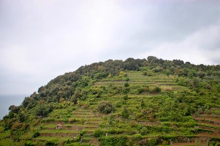 rockwall: Grassy hill