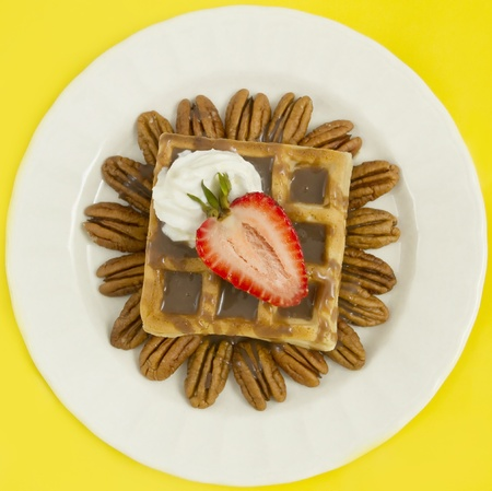 Belgian waffle with hot fudge,strawberries, pecan nuts and whipped cream. studio lights and 100mm macro lens. 版權商用圖片 - 9190344